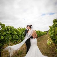 weddings @ Basalt Vineyard